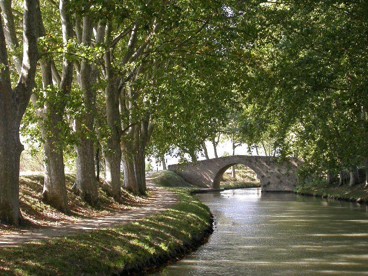 Deux guest houses au coeur de l h rault languedoc locations for Au jardin de la tour carcassonne